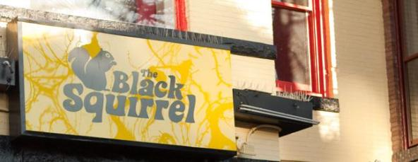 Black-Squirrel-banner